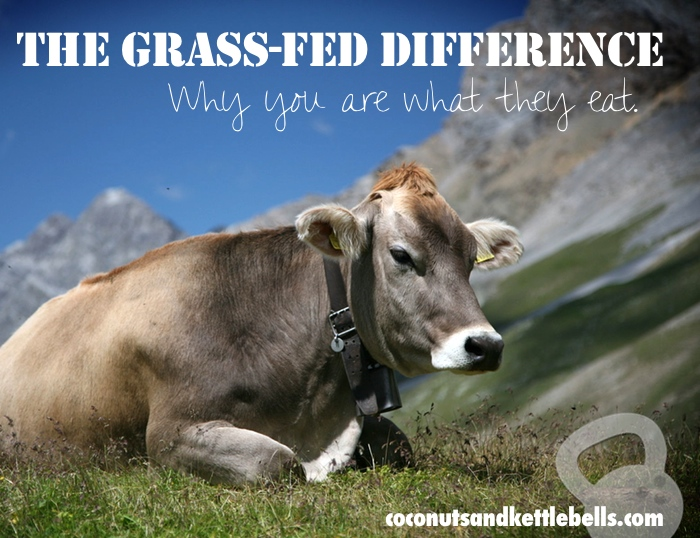 The Grass-Fed Difference: Why You Are What They Eat