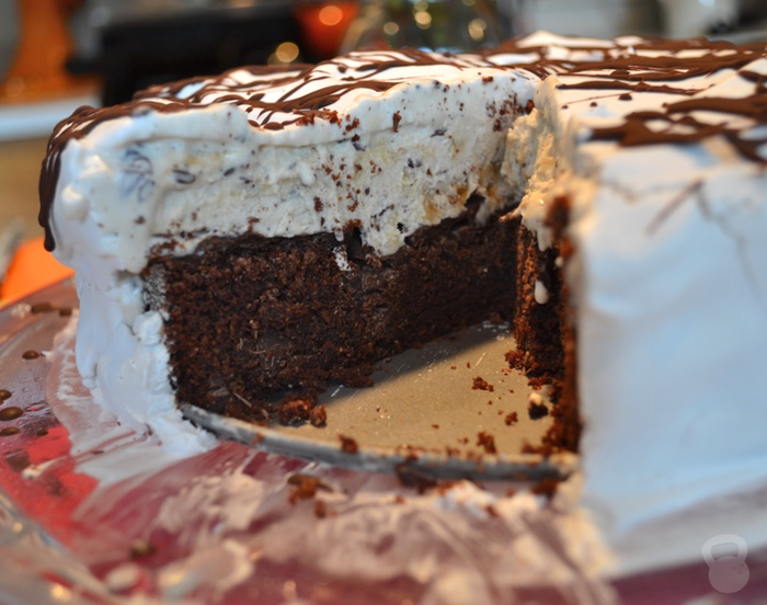 Homemade Ice Cream Cake