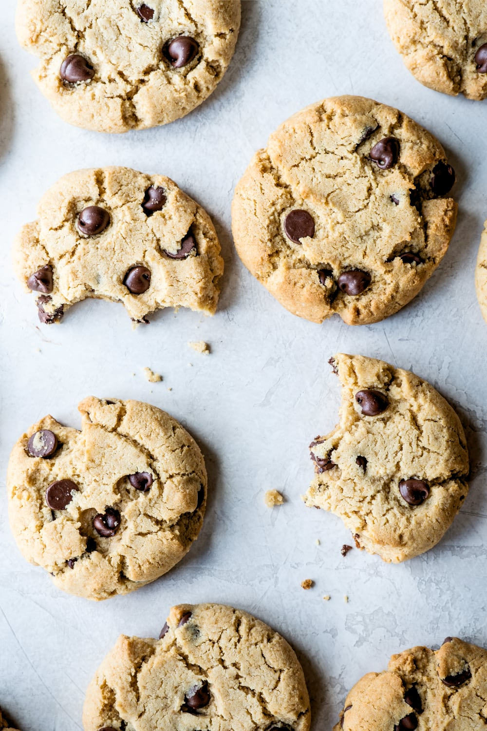 paleo chocolate chip cookies on the counter